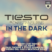 Песня Tiesto feat. Christian Burns – In The Dark (Paul Thomas & Steve Haines Remix)